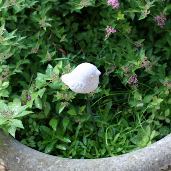 zápichy do zahrady