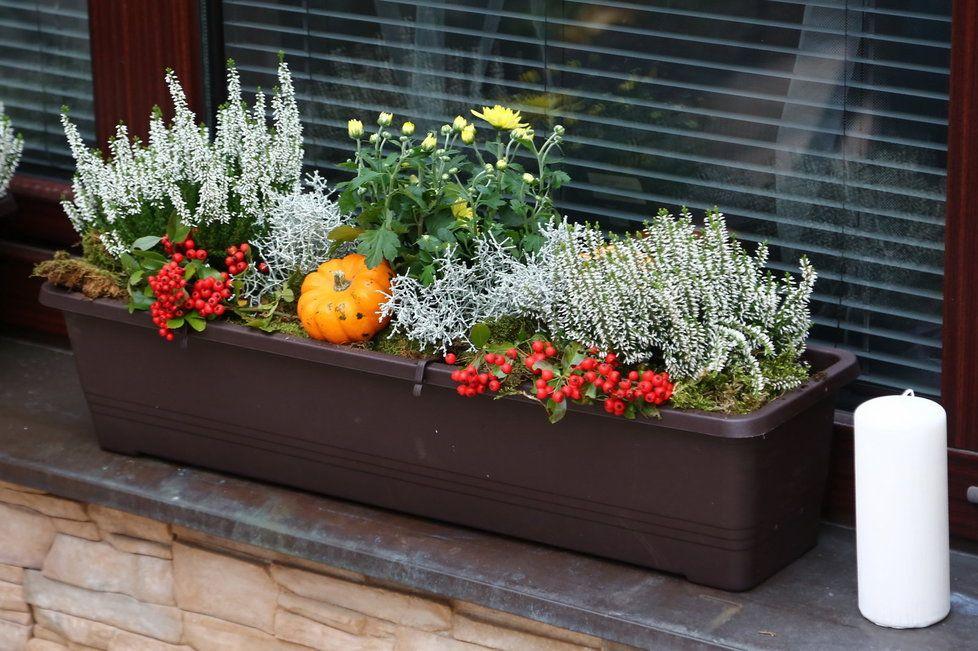 podzimní dekorace do oken