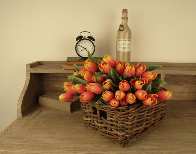tulipany_IMG_0687