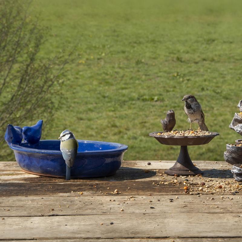 keramické napájadlo pre vtáky